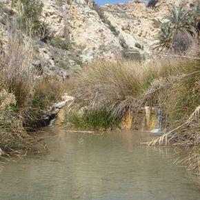 El río Chícamo: viaje al corazón de la Palestina murciana y su principalarteria