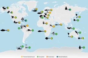 Redistribución de la biodiversidad asociada al cambio climático: impactos sobre los ecosistemas y el bienestarhumano