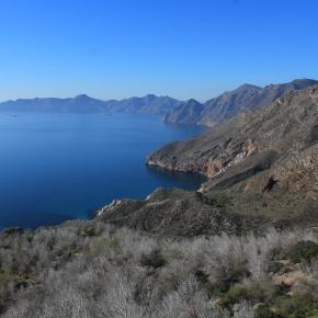 Cabo Tiñoso: un remanso de paz en elMediterráneo