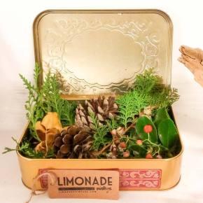 Limonade vintage: moda sostenible paratodos