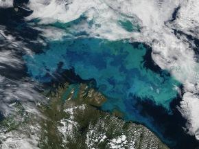 ¿Pueden las algas favorecer la formación de nubes e influir en elclima?
