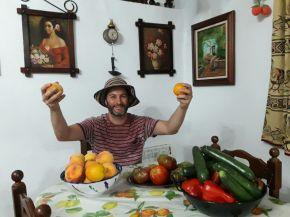 Biodiversidad y agricultura: cómo producir más alimentos con menosimpacto