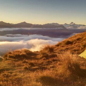 ¿Vamos de camping? Beneficios de la luz natural sobre el relojbiológico