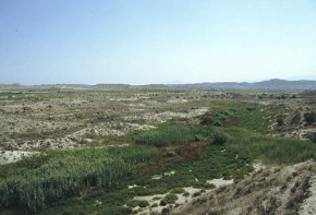 ¿Por qué conservar ríos que sesecan?