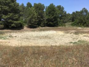 Retroalimentación entre sequía y cambio climático: el ejemplo de los ríos y charcastemporales
