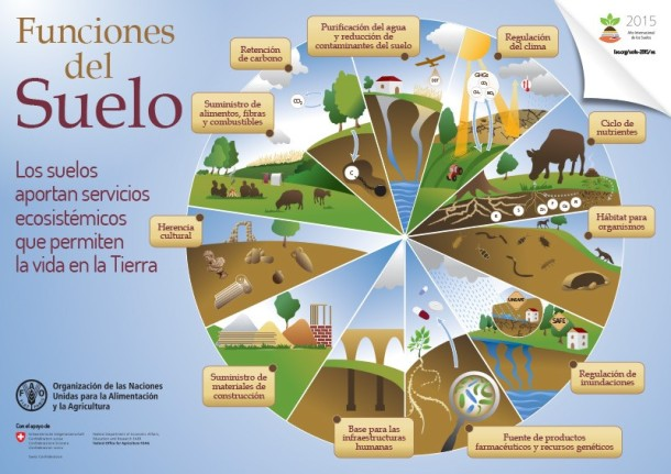 0.Imagen 3 (Servicios ecosistemicos suelos)