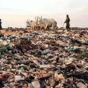 La contaminación del suelo afecta al aire que respiramos, al agua que bebemos y a los alimentos queconsumimos