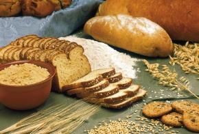 Alimentos menos nutritivos debido al aumento deCO2