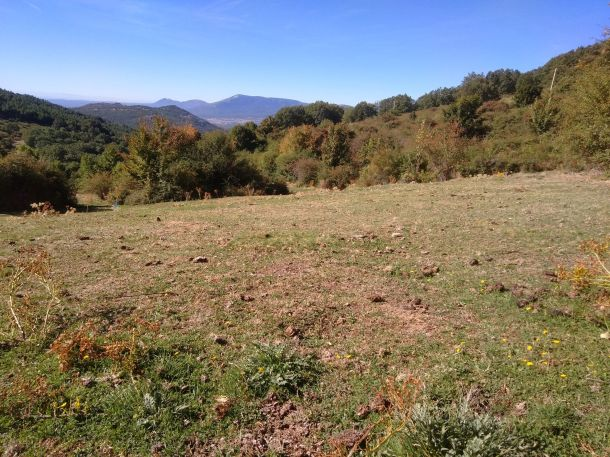 Pastizal de montaña de la Sierra de Guadarrama