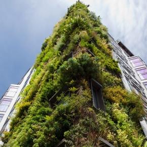 La contribución de las infraestructuras verdes a la biodiversidadurbana