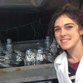 """Cristina Romera Castillo: """"La importancia del carbono oceánico en el funcionamiento delplaneta"""""""