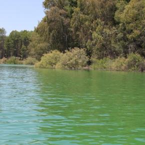 Verde que te quiero verde…, ¡pero no tanto!: la paradoja delmetano
